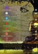 Poster_Chakras_2011_es
